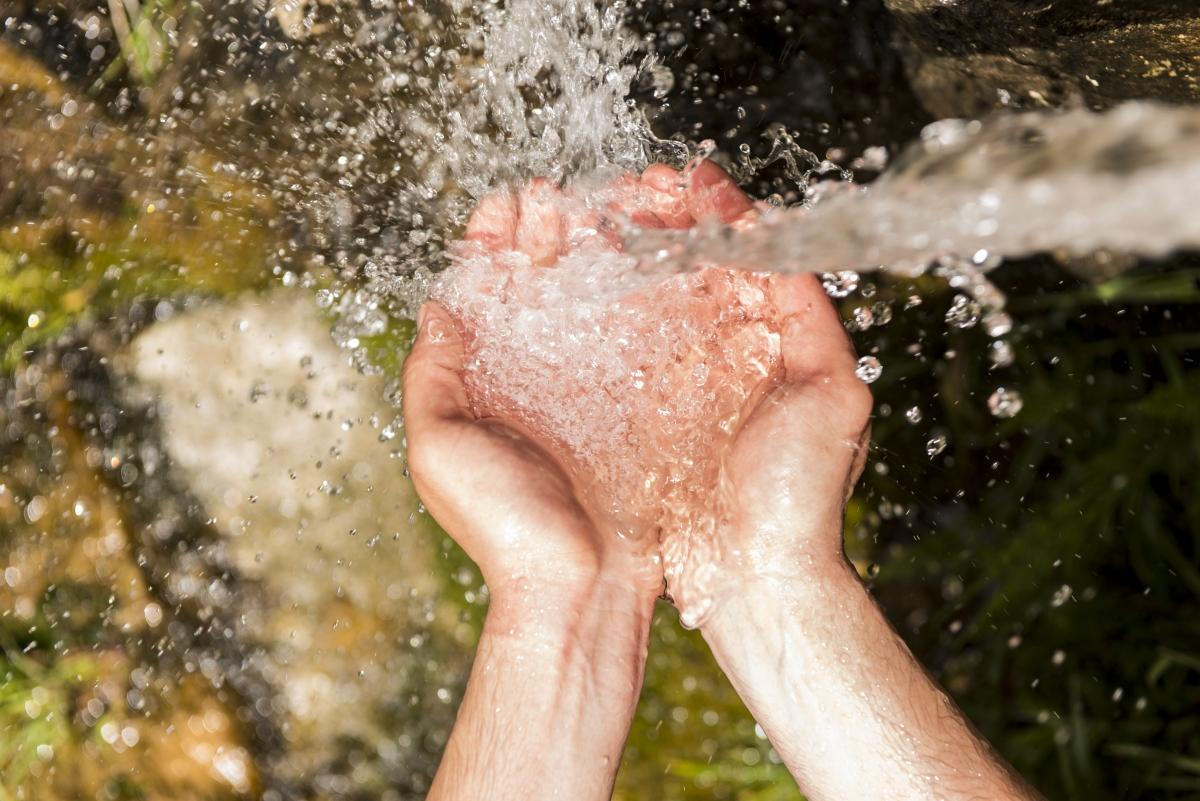 crazymedia/Shutterstock.com