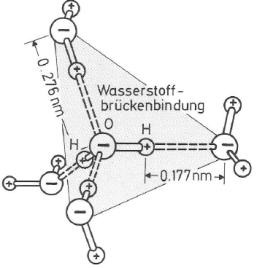 Abb. 2 Wasserstoffbrücken - H2O.png